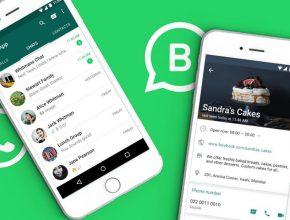 whatsapp business2 290x220 - 【B2C公司必看!】WhatsApp Business 有什麼要改善?