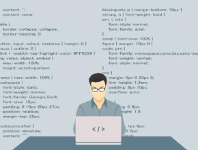programmer 1653351 1280 290x220 - 過去5年間的首20位科技名詞曝光!哪字眼最熱門?