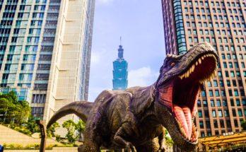 photo 1560148271 00b5e5850812 348x215 - Google AR可看到「真正恐龍」? 1分鐘教你如何跟小朋友玩「恐龍之旅」!